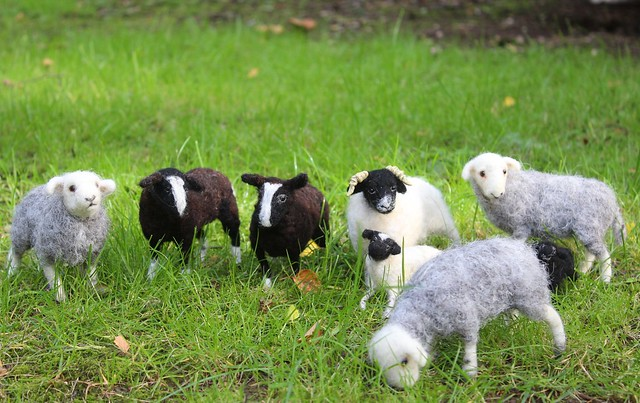 needle felted sheep 210