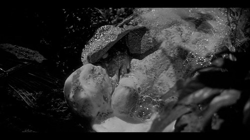 Invasion of the Body Snatchers - 1956 - screenshot 9