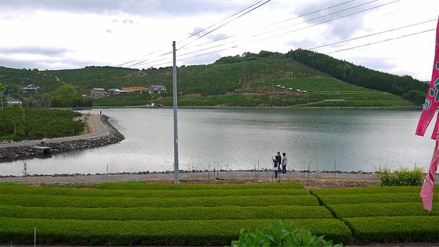 千財農園(41)