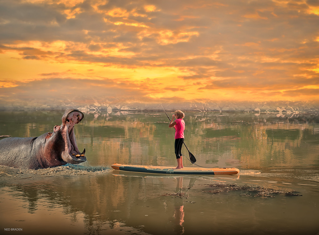 le stand-up paddle est dangereux 36664373310_b881f4b780_b