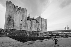Niort - Le Donjon, septembre 2017 - Photo of Niort