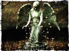 Eternal Gothic Guardian - Teresa