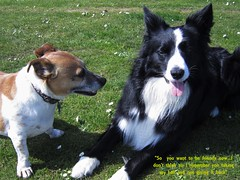Jack trying to make up to Asha but Asha shying away from him as she still hasn't forgiven him for stealing her ball
