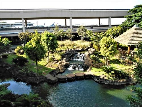 jp-tokyo 29-retour-Tokyo-Honolulu (24)