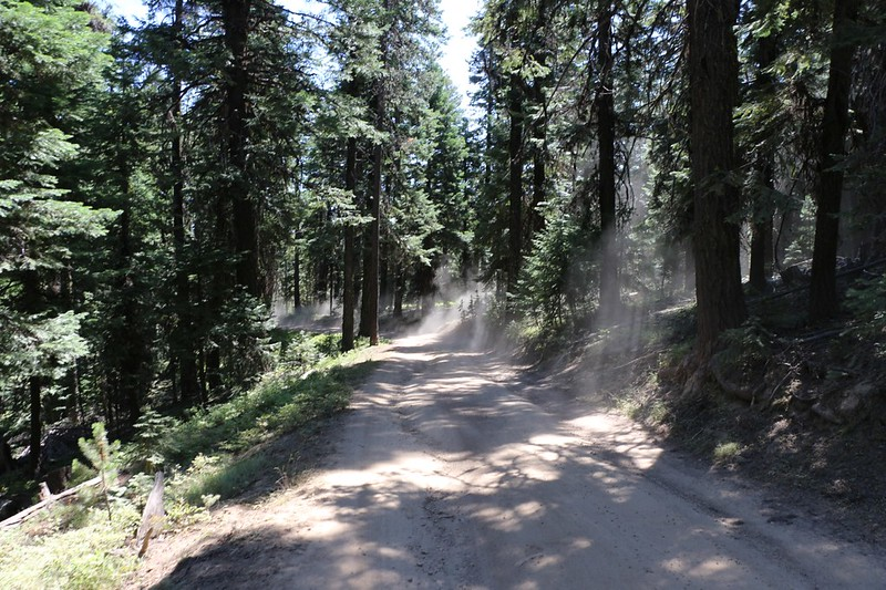 The cars that passed us as we hiked down the forest road from Dixie Butte made plenty of choking dust clouds