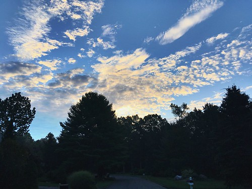 walk blue early morning trees sunrise clouds sky iphone