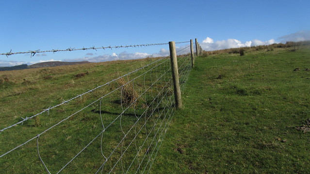 Fence on Ringmoor Down