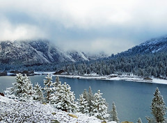 Spring Snow, Yosemite High Country, CA 2016