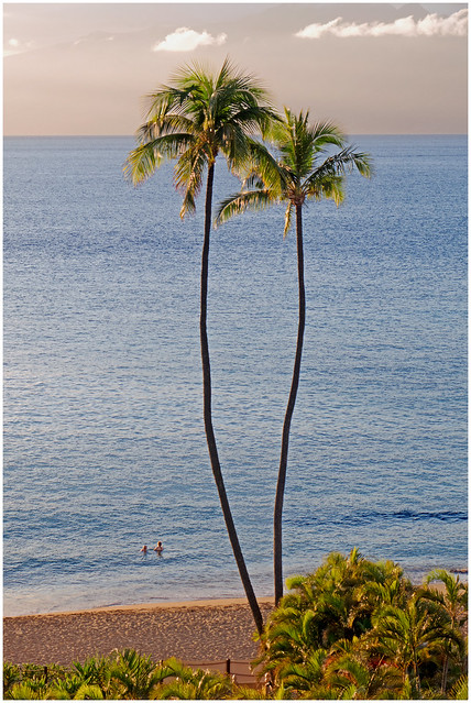 Perfect Place for a Conversation - Maui, Hawaii