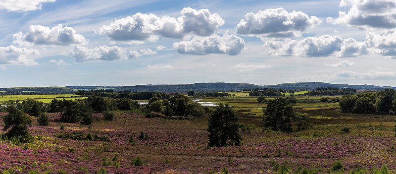 Panorama over Combe Heath