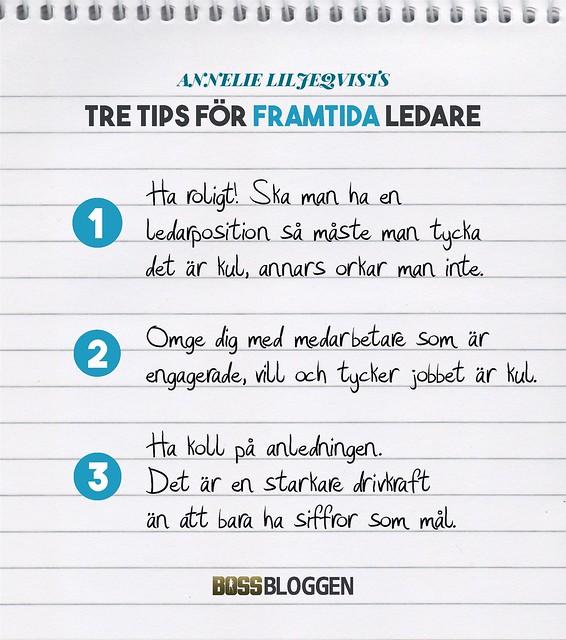 3 Tips Annelie Liljeqvist