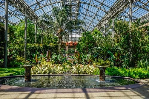 Longwood Gardens / Conservatory / Kennett Square, Pennsylvania