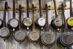 Banjo - like instrument