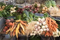 Root vegetables - Photo of Pernant