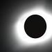 Great American Eclipse 2017 by Amanda Galiano