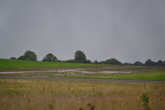 RAF Wethersfield