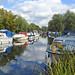 River Chelmer Navigation near Paper Mill Lock, Little Baddow, Essex