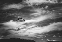 Paraglider in Queenstown