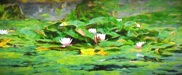Lilies - Based upon Monet's paintings.