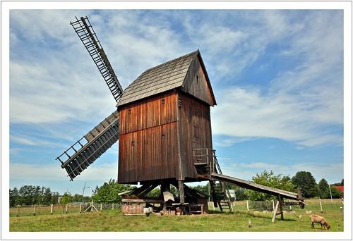Ein schöner Mühlenrücken kann auch entzücken