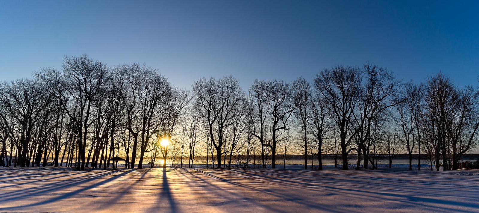 L'hiver en couleur... 35595168453_130d12cb30_h