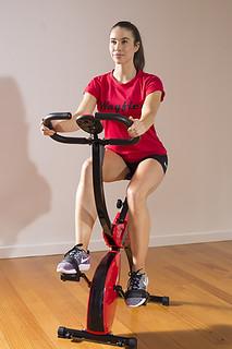 Wayflex Exercise Bike 95 (102)