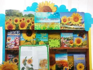 Книжково-ілюстративна виставка 14.08.17 О. Грибоєдова