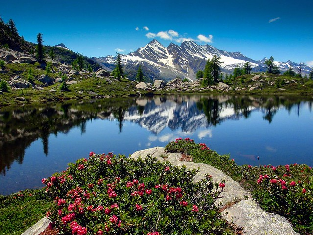 Strada Gran paradiso - Piemonte