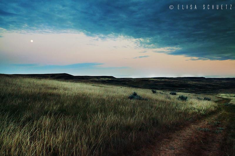 1_Grasslands_by_ems (3)