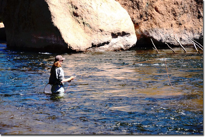 Fly fishing Cheesman Canyon on the South Platte River (11)