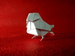 Little bird- Dai Watanabe