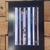 One way or another, picture this ! New addition to the Album Library -Blondie Parallel Lines #richardgoodallgallery # albumlibrary #blondie
