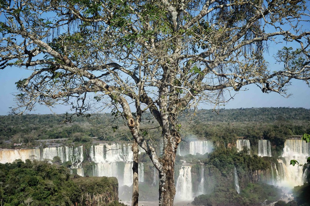Iguazu - Bresil - Chutes 5