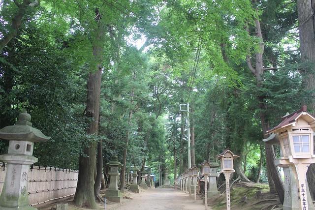 hitachisousyagu043