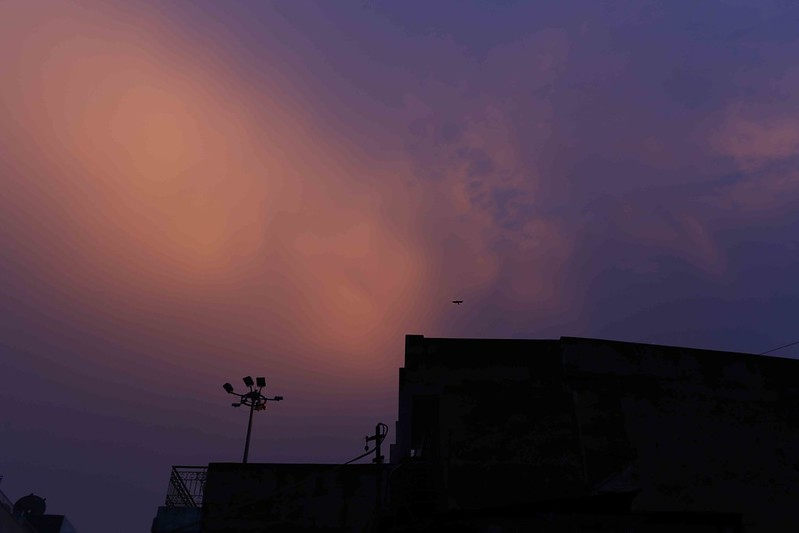 City Nature - Monsoon Sky, Across Delhi