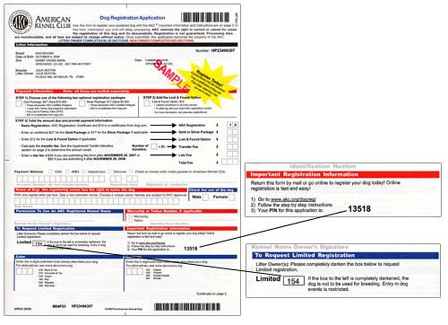 Registration and Health Testing documents - Doberman Forum ...