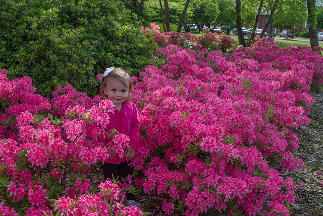 McKayla in the Flowers