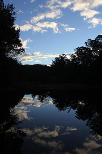 Wollombi Brook