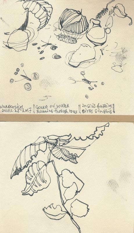 Sketchbook #106: Forest