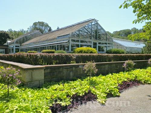np greenhouse 2