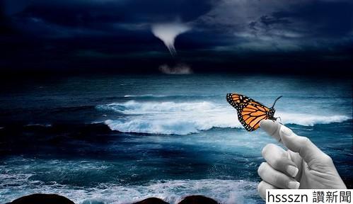 Butterfly_600_346