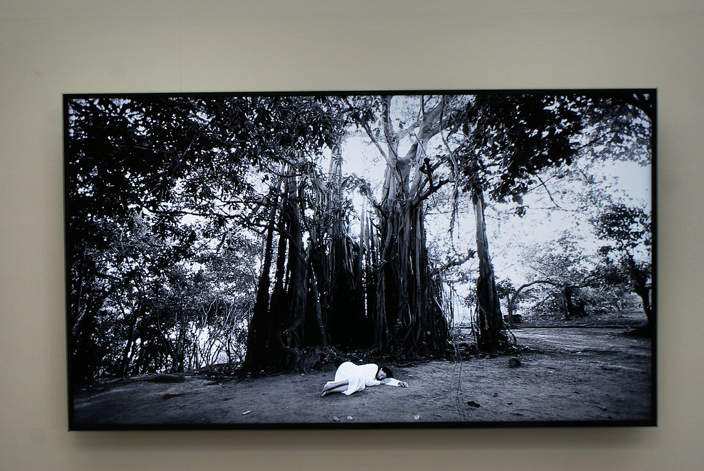 Exposition sur Marina Abramović au Musée Louisiana près de Copenhague.