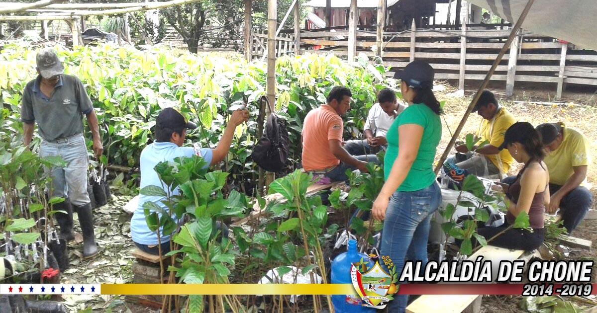 Alcaldía de Chone continúa trabajando con el sector productivo