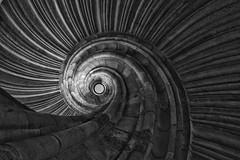 spiralförmig / spirally