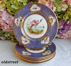 Royal Doulton Porcelain Plates Cobalt Gold Chelsea Exotic Birds Signed E Percy