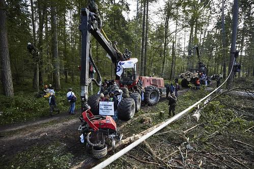 Blokada nielegalnej wycinki w Puszczy Białowieskiej