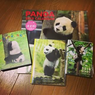 気の早い話だけど、カレンダーにスケジュール帳、2018年版パンダシリーズ。