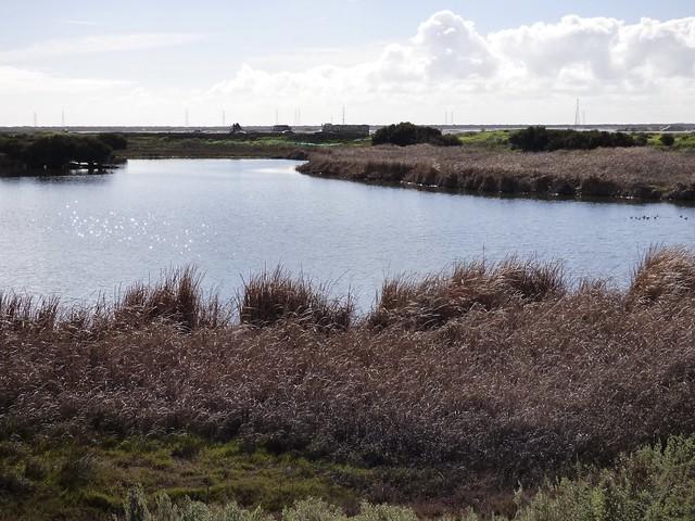 Wetlands, Panasonic DMC-FZ70