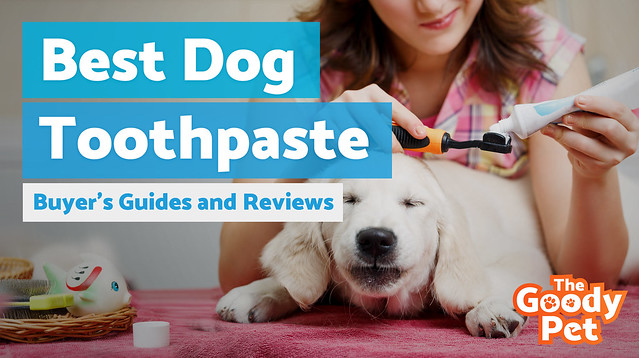 best-dog-toothpaste-the-goody-pet