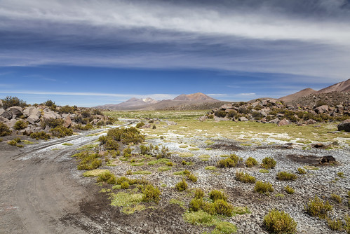 chile landscape track road sky grass wild wilderness vulcano outdoors nature natur landschaft scenic beauty clouds shrub rocks south america southamerica altiplano highlands andes mountains canon canon5d eos